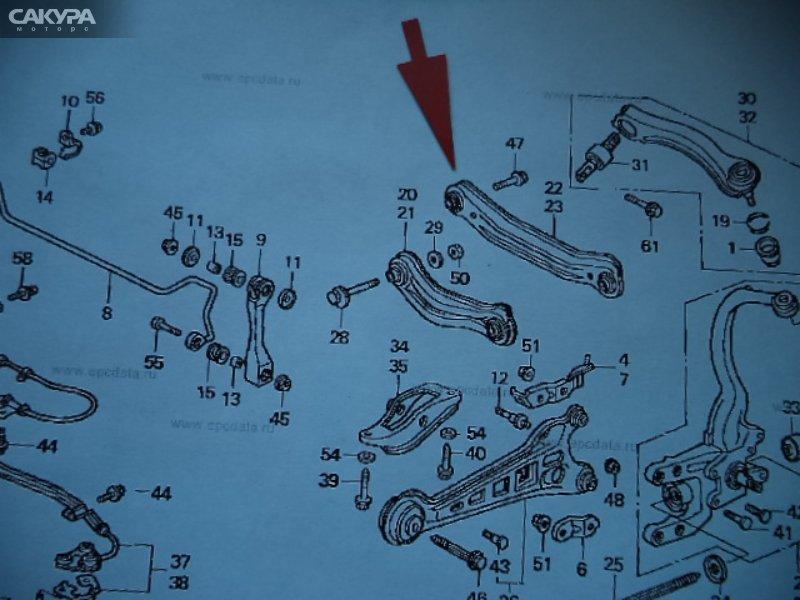 Тяга задняя Honda Accord Coupe US CD7  Красноярск Сакура Моторс